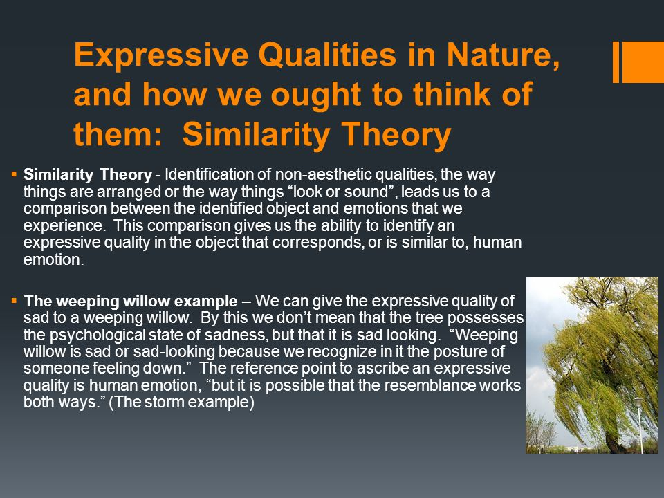 Expressive Qualities in Nature, and how we ought to think of them: Similarity Theory  Similarity Theory - Identification of non-aesthetic qualities,