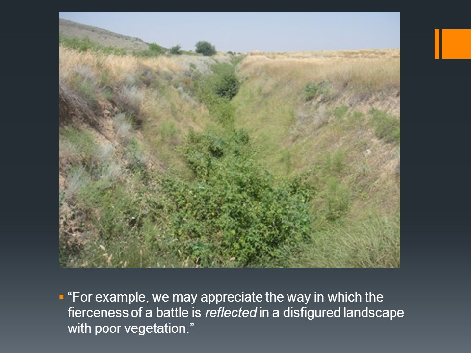  For example, we may appreciate the way in which the fierceness of a battle is reflected in a disfigured landscape with poor vegetation.