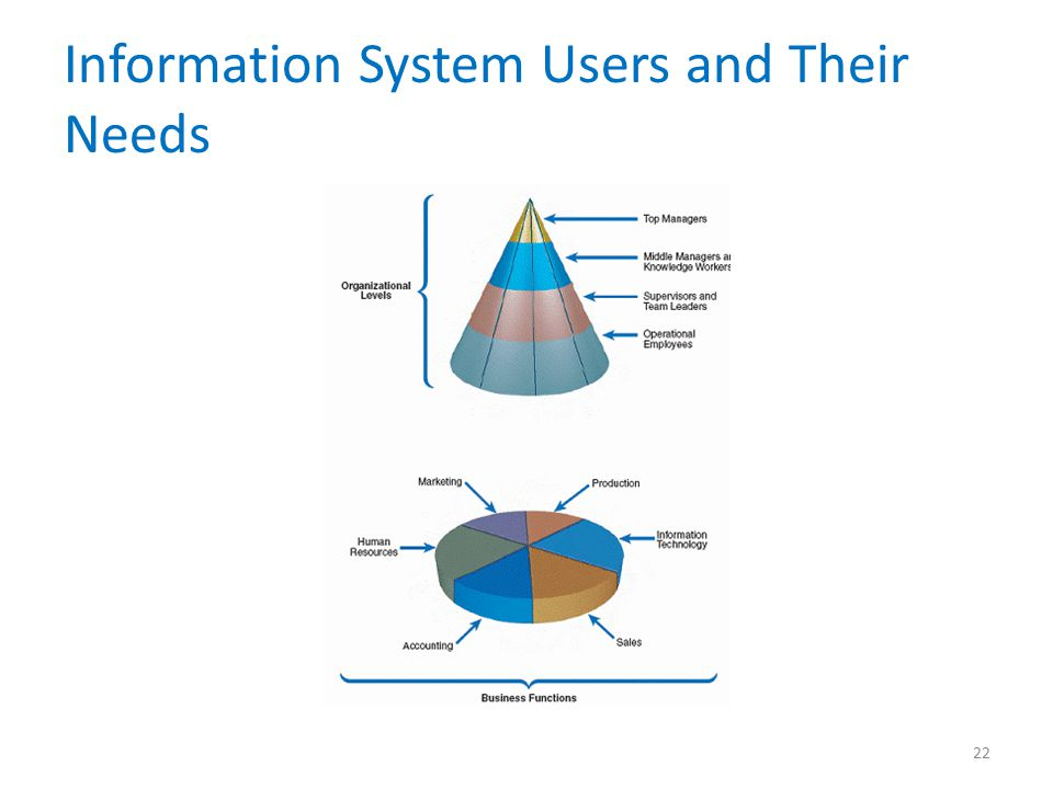 Information System Users and Their Needs 22