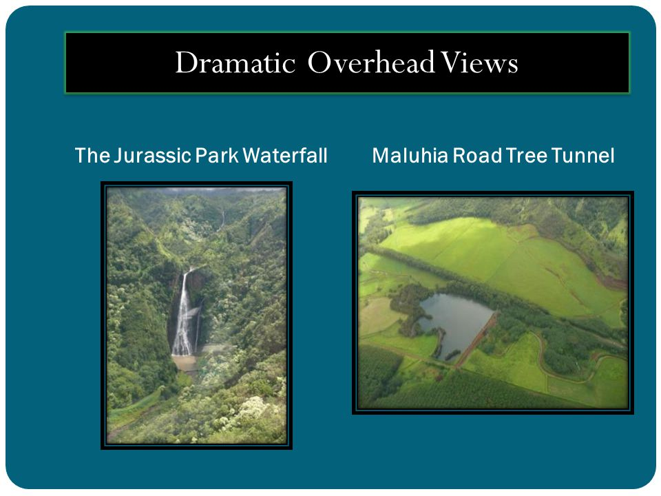 The Jurassic Park WaterfallMaluhia Road Tree Tunnel Dramatic Overhead Views