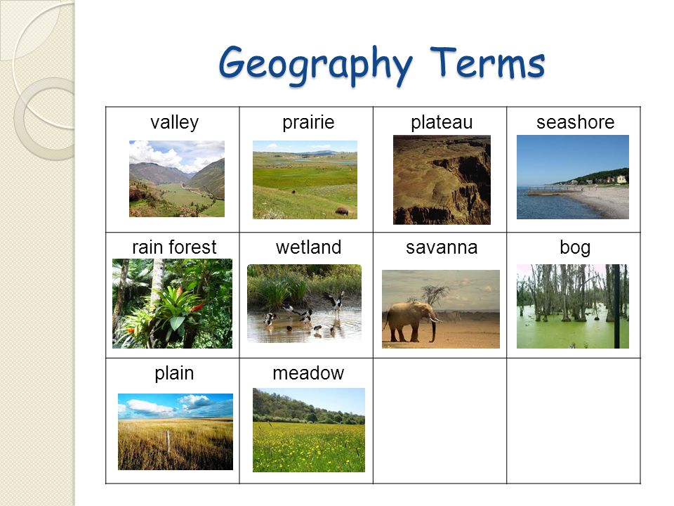 Geography Terms valley prairie plateau seashore rain forest wetland savanna bog plain meadow