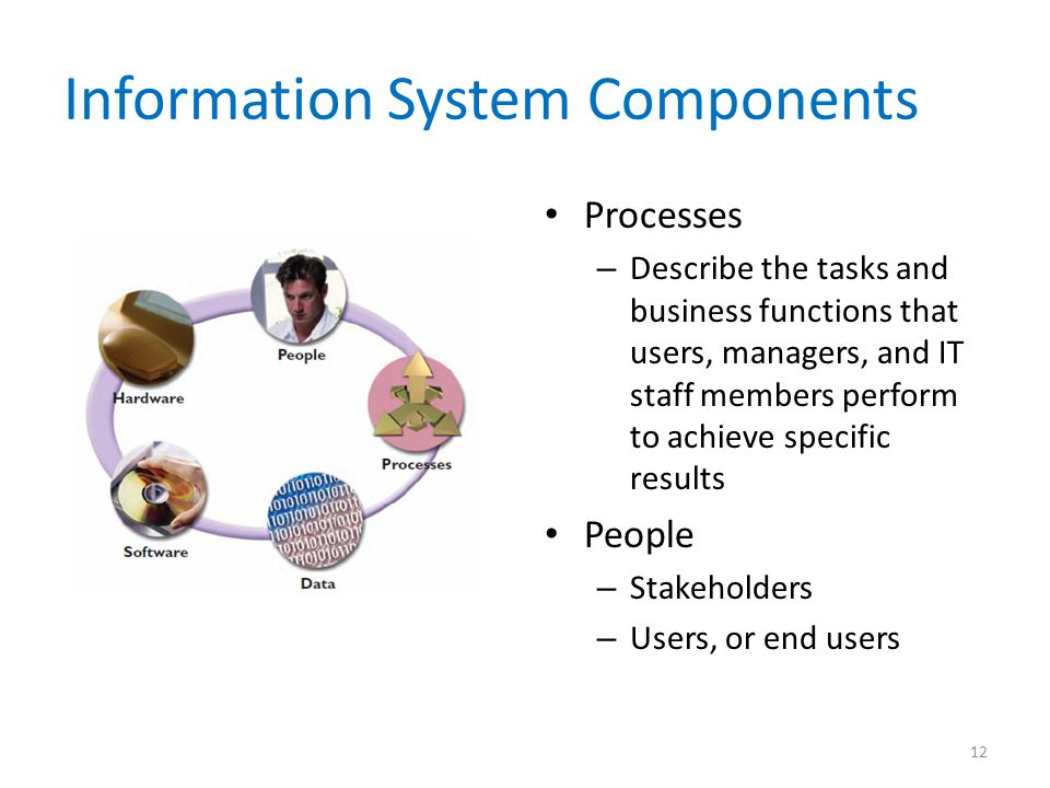 Information System Components Processes – Describe the tasks and business functions that users, managers, and IT staff members perform to achieve spec