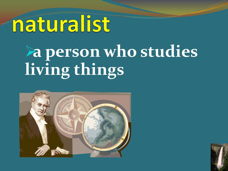  a person who studies living things