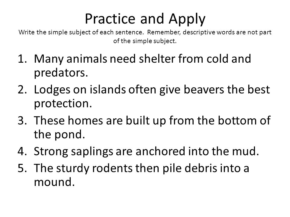 Practice and Apply Write the simple subject of each sentence. Remember, descriptive words are not part of the simple subject. 1.Many animals need shel