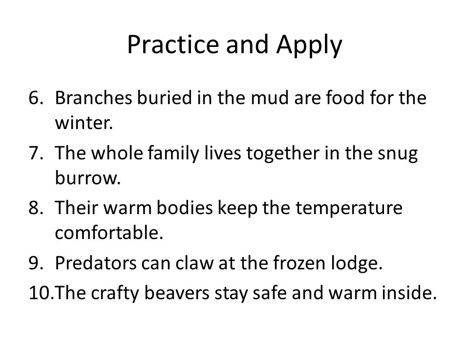 Practice and Apply 6.Branches buried in the mud are food for the winter. 7.The whole family lives together in the snug burrow. 8.Their warm bodies kee