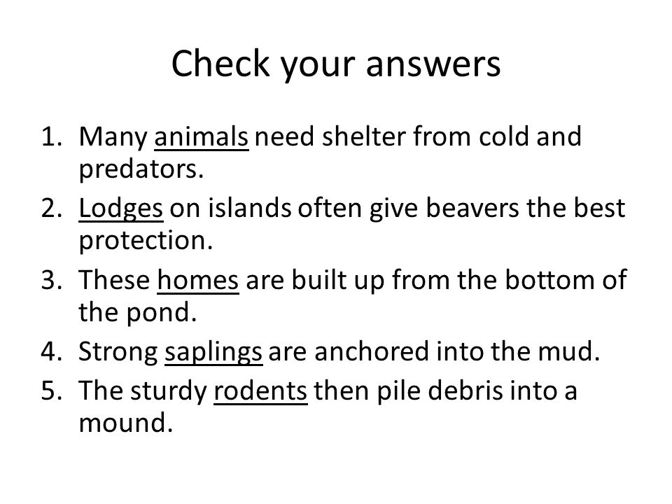 Check your answers 1.Many animals need shelter from cold and predators. 2.Lodges on islands often give beavers the best protection. 3.These homes are