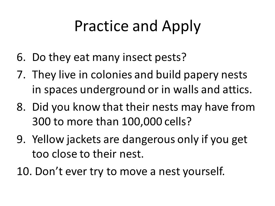 Practice and Apply 6.Do they eat many insect pests? 7.They live in colonies and build papery nests in spaces underground or in walls and attics. 8.Did