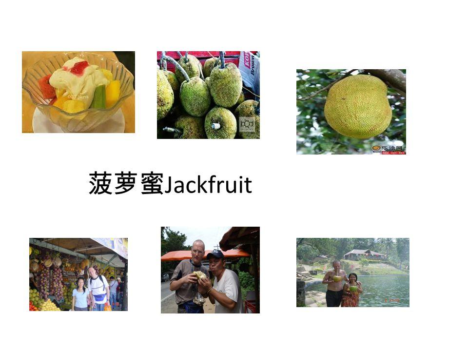菠萝蜜 Jackfruit