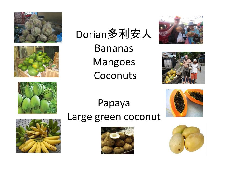 Dorian 多利安人 Bananas Mangoes Coconuts Papaya Large green coconut