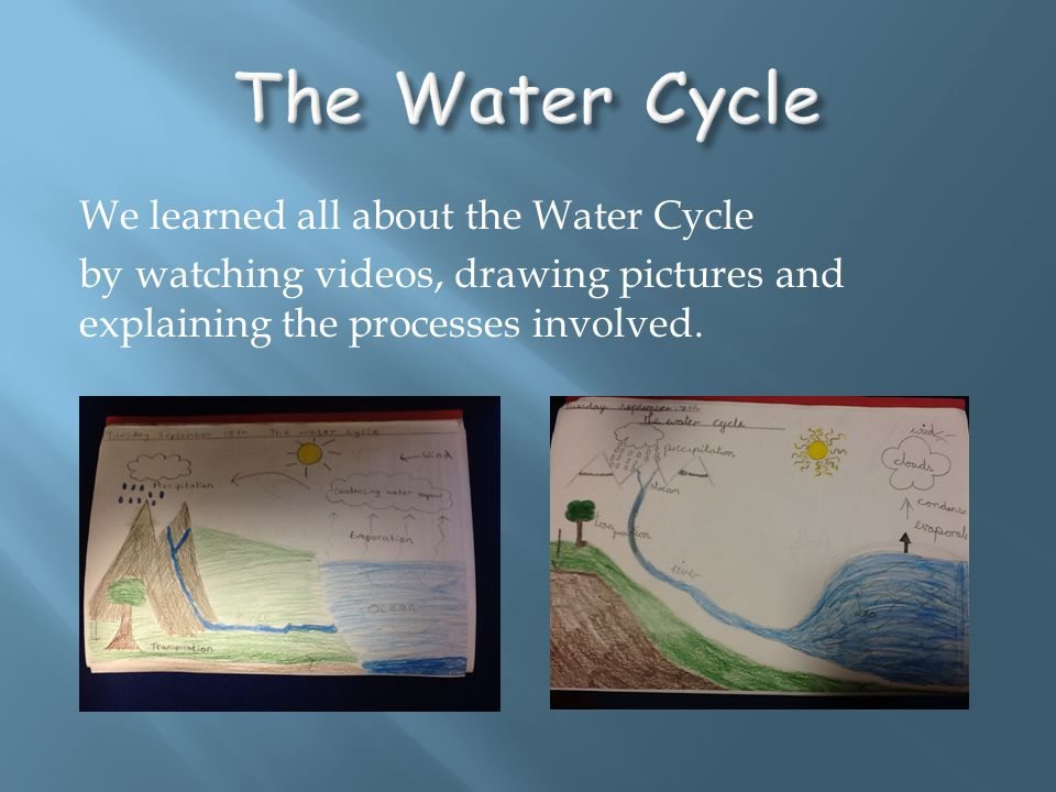 We learned all about the Water Cycle by watching videos, drawing pictures and explaining the processes involved.