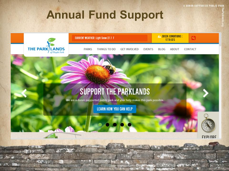 Annual Fund Support