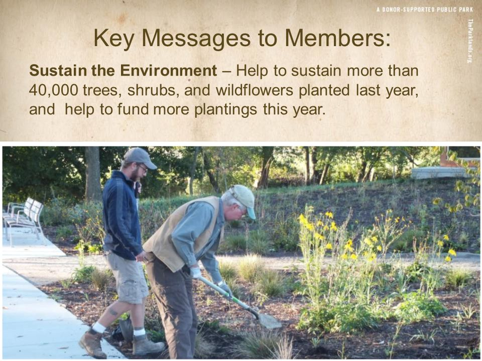 Sustain the Environment – Help to sustain more than 40,000 trees, shrubs, and wildflowers planted last year, and help to fund more plantings this year.