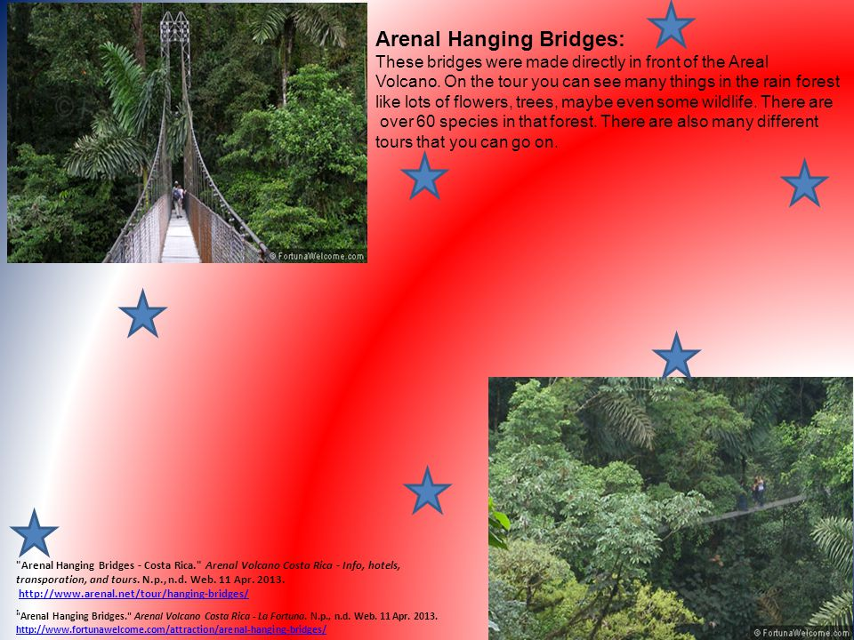 Arenal Hanging Bridges: These bridges were made directly in front of the Areal Volcano. On the tour you can see many things in the rain forest like lo