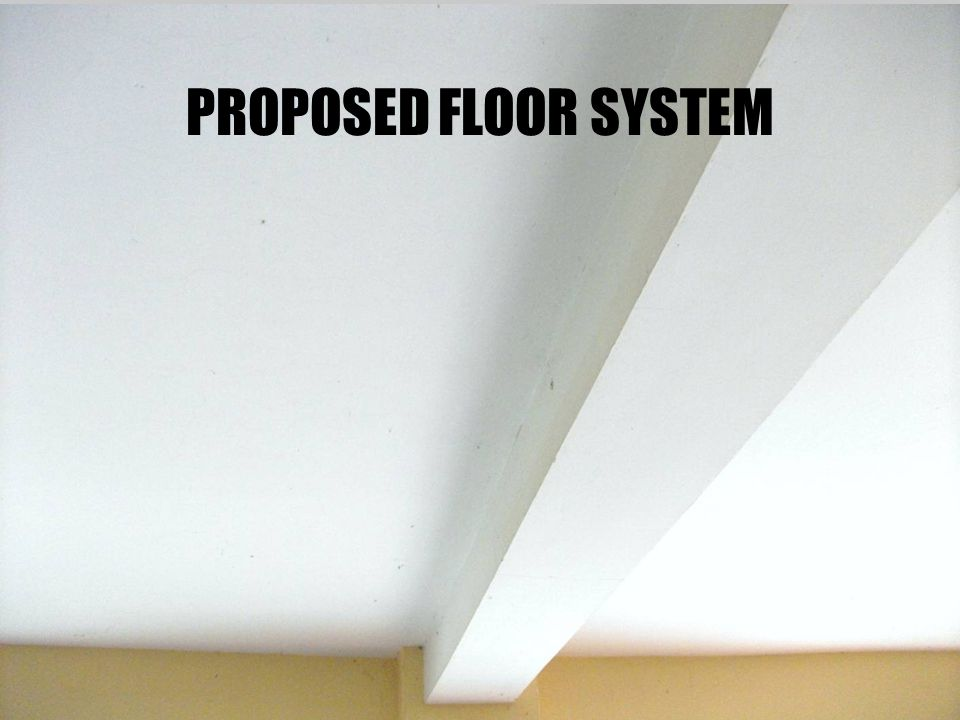 PROPOSED FLOOR SYSTEM