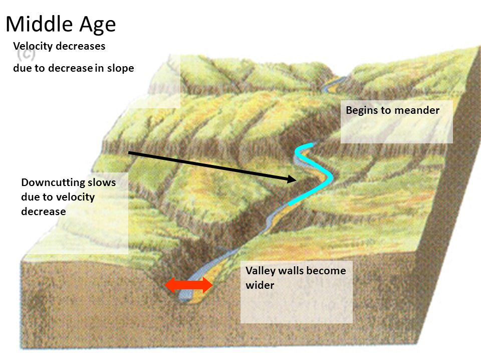 Middle Age Velocity decreases due to decrease in slope Downcutting slows due to velocity decrease Valley walls become wider Begins to meander