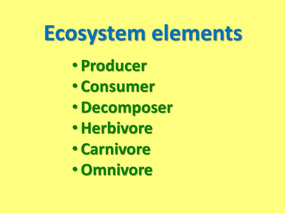 Ecosystem elements Producer Producer Consumer Consumer Decomposer Decomposer Herbivore Herbivore Carnivore Carnivore Omnivore Omnivore