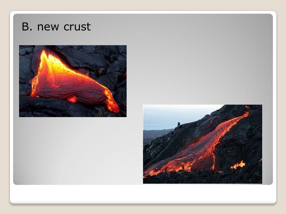 B. new crust