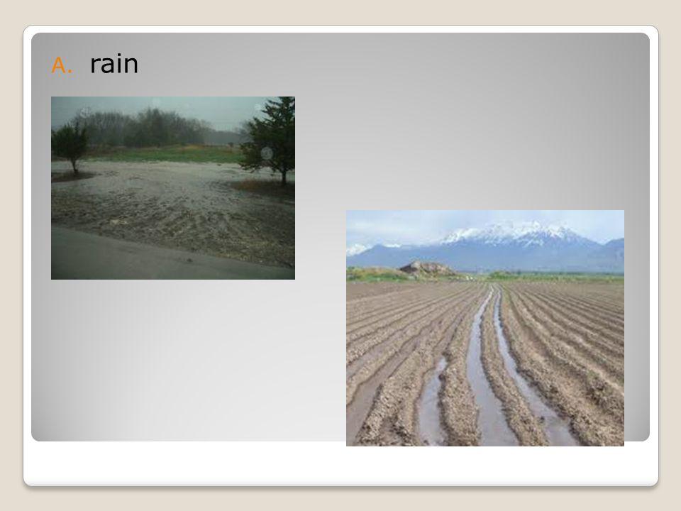 A. rain