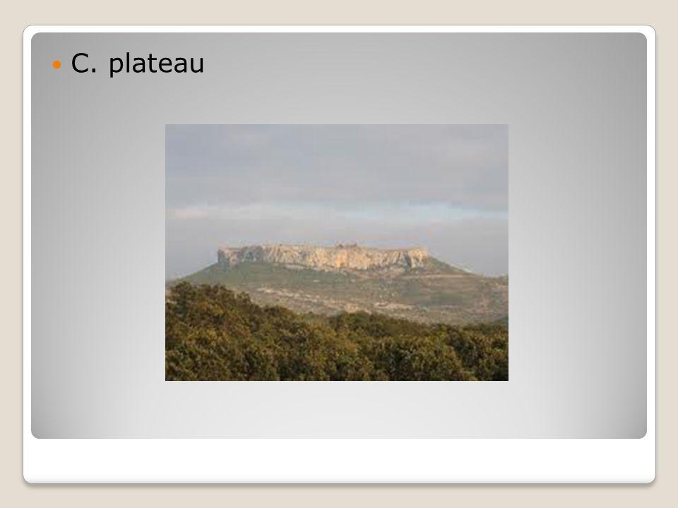 C. plateau