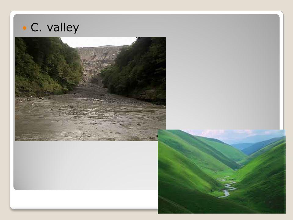 C. valley