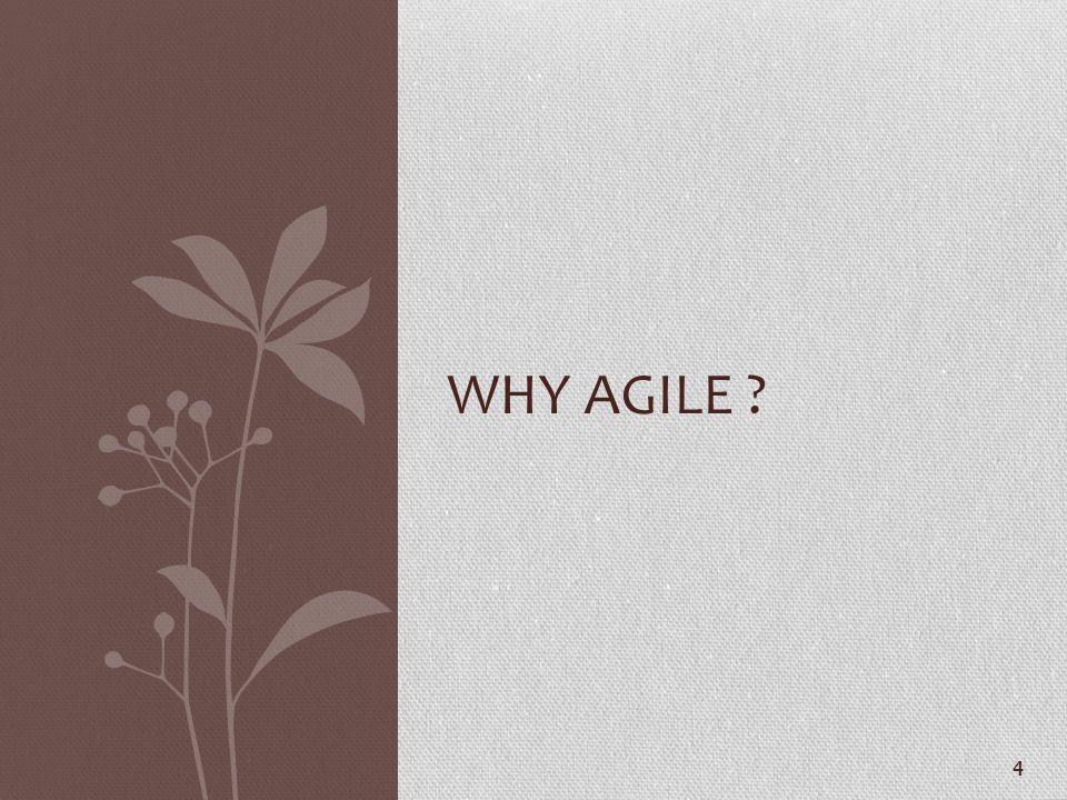 4 WHY AGILE