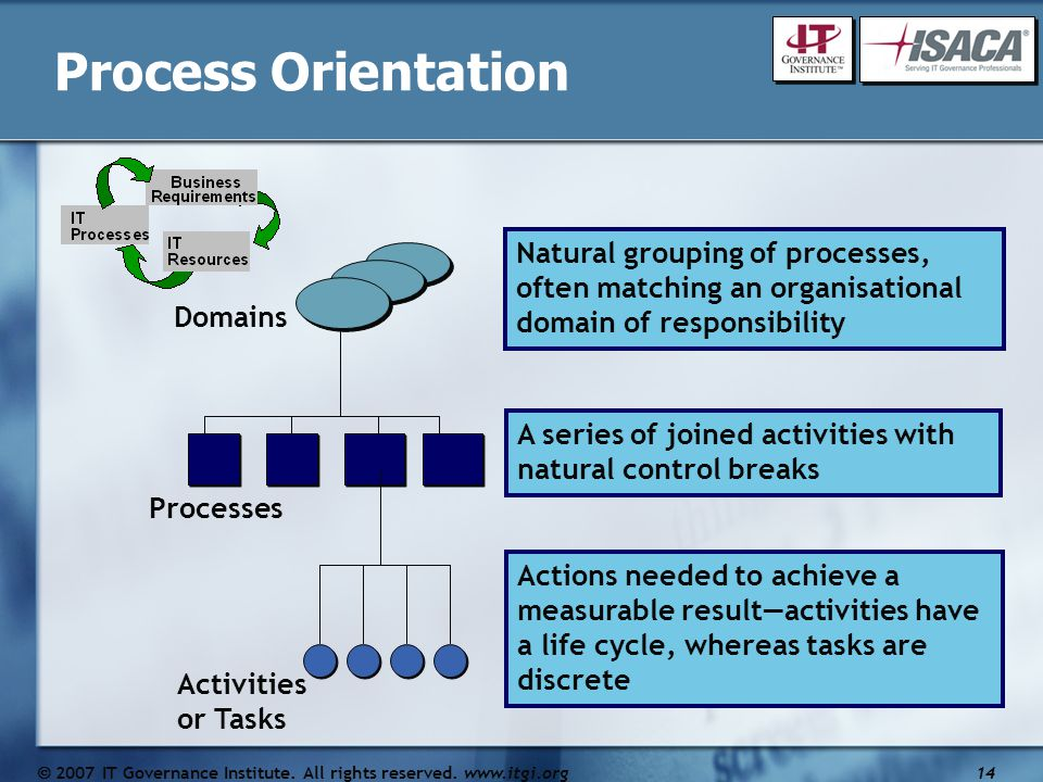 Processes A series of joined activities with natural control breaks Activities or Tasks Actions needed to achieve a measurable result—activities have a life cycle, whereas tasks are discrete Domains Natural grouping of processes, often matching an organisational domain of responsibility Process Orientation  2007 IT Governance Institute.