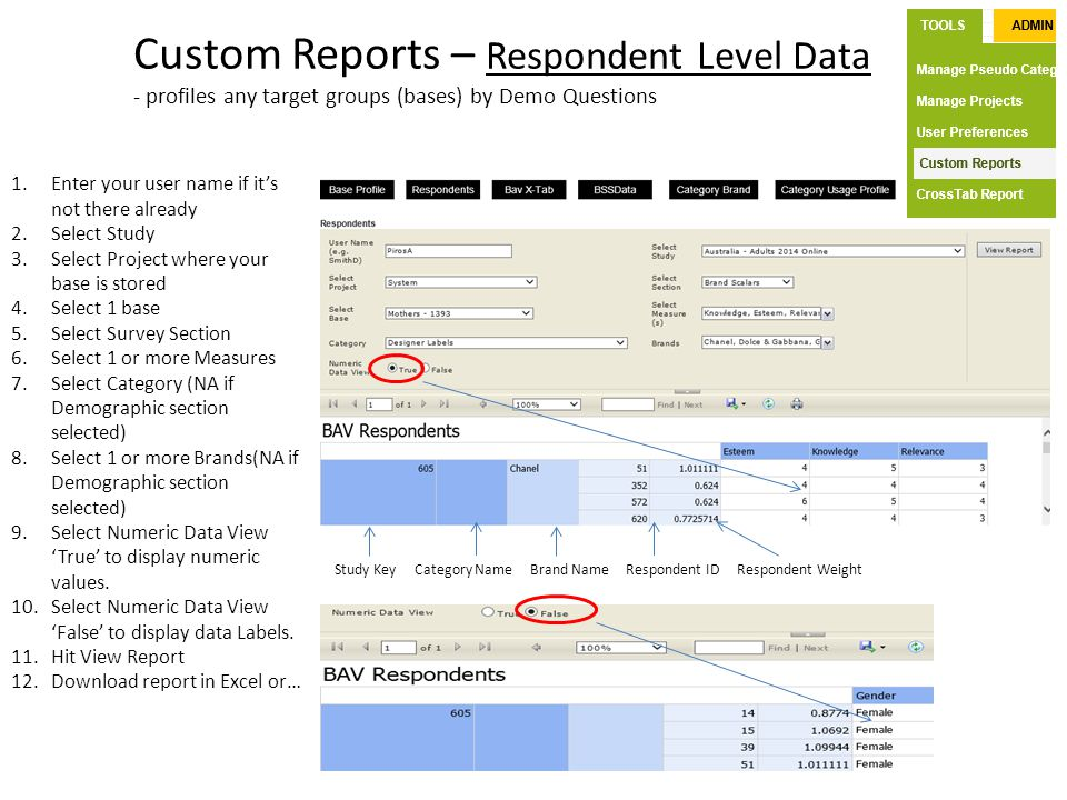 Custom Reports – Respondent Level Data - profiles any target groups (bases) by Demo Questions 1.Enter your user name if it's not there already 2.Selec