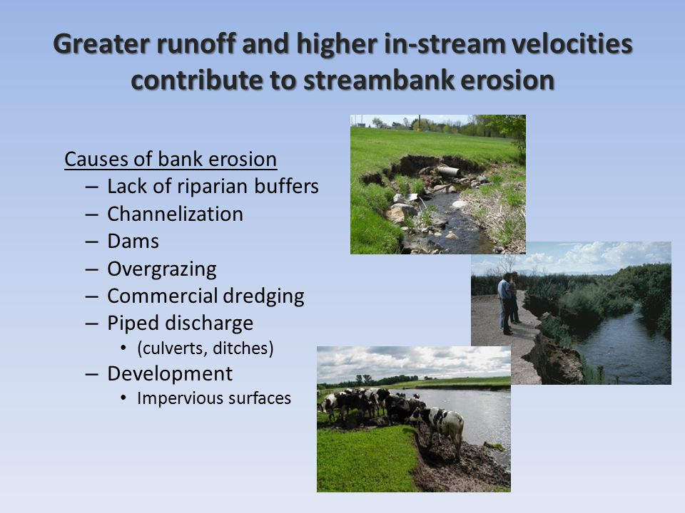 Causes of bank erosion – Lack of riparian buffers – Channelization – Dams – Overgrazing – Commercial dredging – Piped discharge (culverts, ditches) – Development Impervious surfaces Greater runoff and higher in-stream velocities contribute to streambank erosion