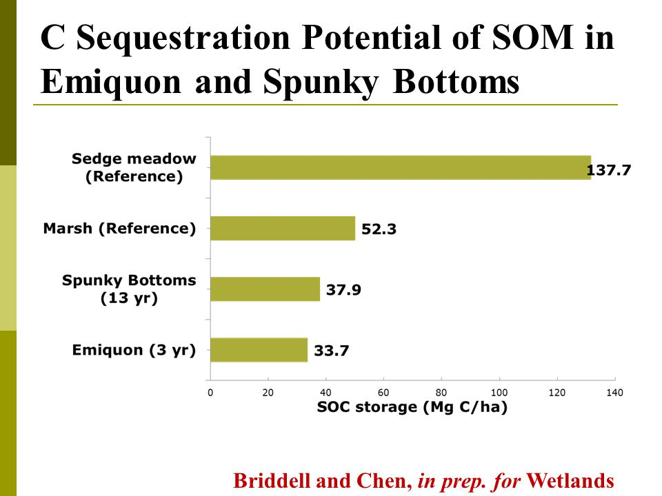 C Sequestration Potential of SOM in Emiquon and Spunky Bottoms Briddell and Chen, in prep.