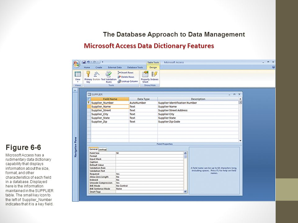 Figure 6-6 Microsoft Access has a rudimentary data dictionary capability that displays information about the size, format, and other characteristics of each field in a database.