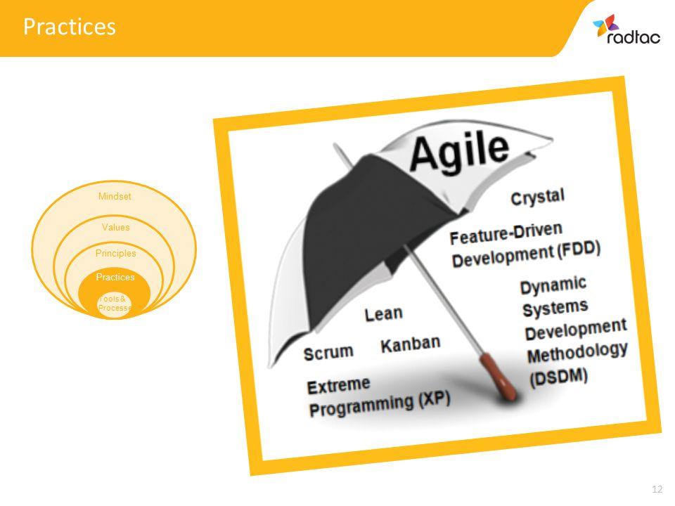 12 Practices Mindset Values Principles Practices Tools & Processes