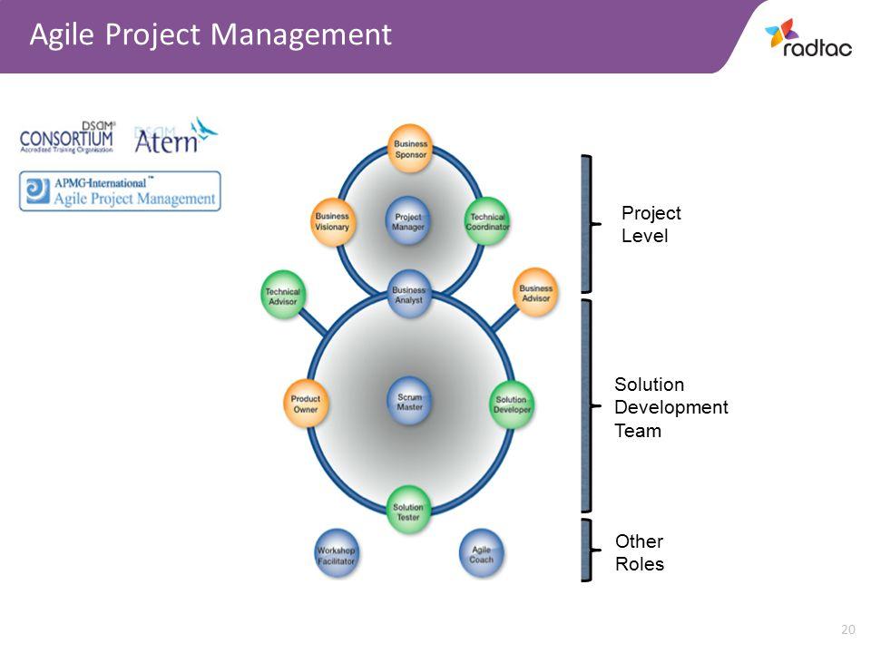 20 Agile Project Management Project Level Solution Development Team Other Roles