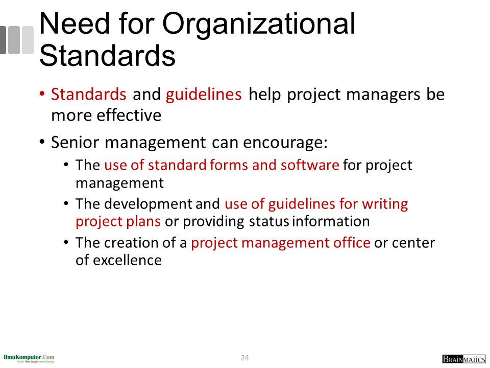 Need for Organizational Standards Standards and guidelines help project managers be more effective Senior management can encourage: The use of standar