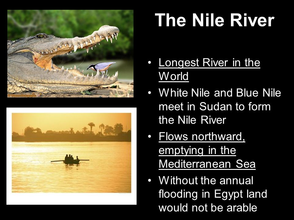 The Nile River Longest River in the World White Nile and Blue Nile meet in Sudan to form the Nile River Flows northward, emptying in the Mediterranean Sea Without the annual flooding in Egypt land would not be arable