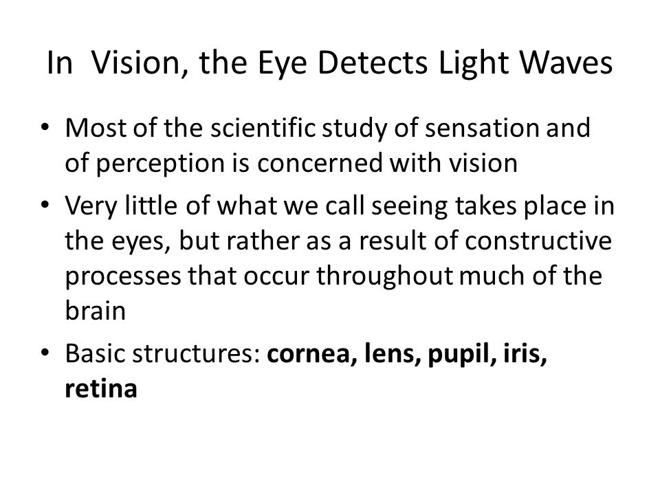 In Vision, the Eye Detects Light Waves Most of the scientific study of sensation and of perception is concerned with vision Very little of what we call seeing takes place in the eyes, but rather as a result of constructive processes that occur throughout much of the brain Basic structures: cornea, lens, pupil, iris, retina