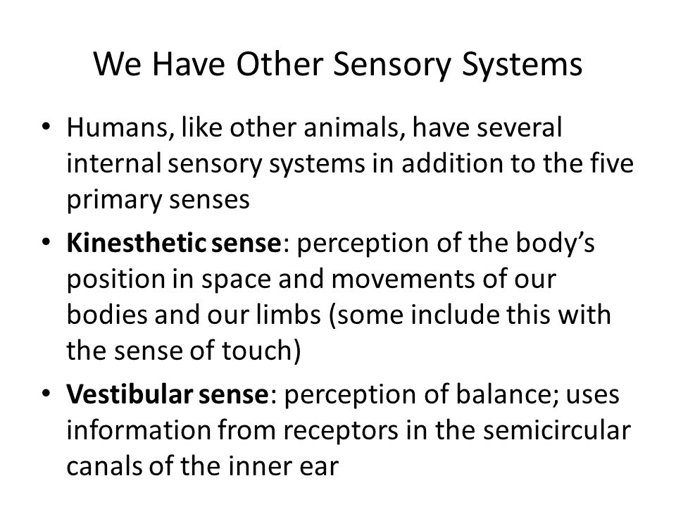 We Have Other Sensory Systems Humans, like other animals, have several internal sensory systems in addition to the five primary senses Kinesthetic sen