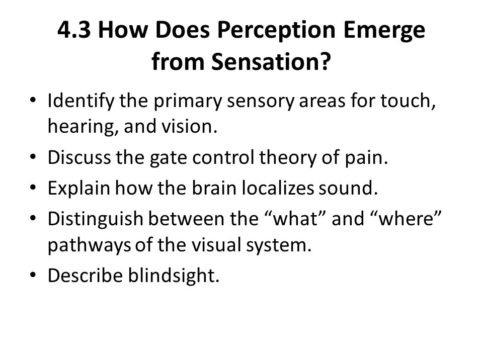 4.3 How Does Perception Emerge from Sensation? Identify the primary sensory areas for touch, hearing, and vision. Discuss the gate control theory of p