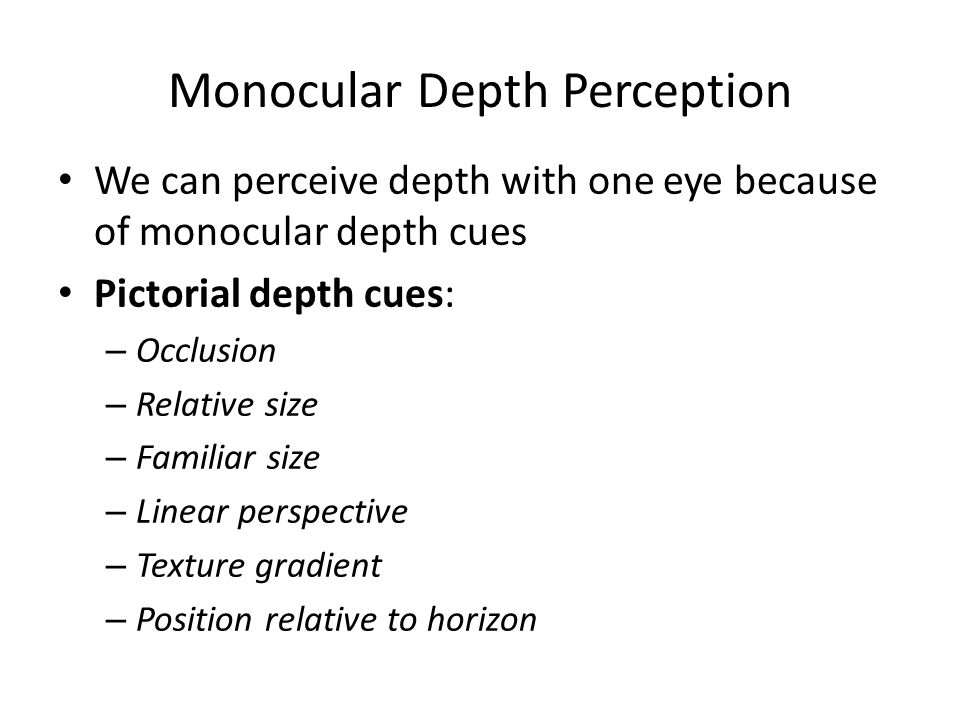 Monocular Depth Perception We can perceive depth with one eye because of monocular depth cues Pictorial depth cues: – Occlusion – Relative size – Fami