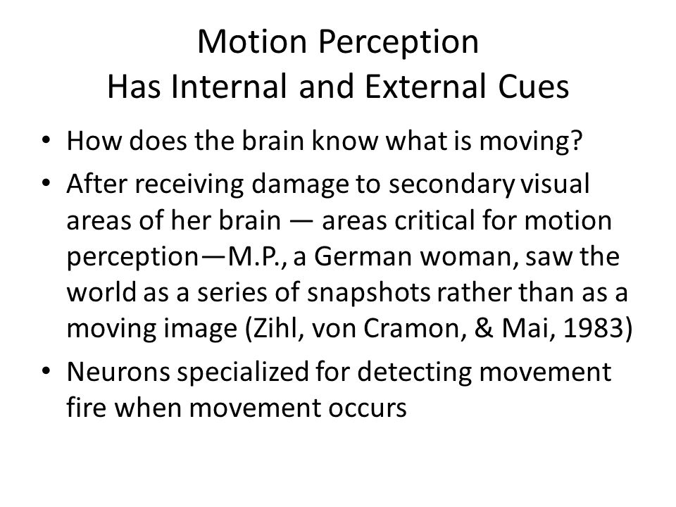 Motion Perception Has Internal and External Cues How does the brain know what is moving.