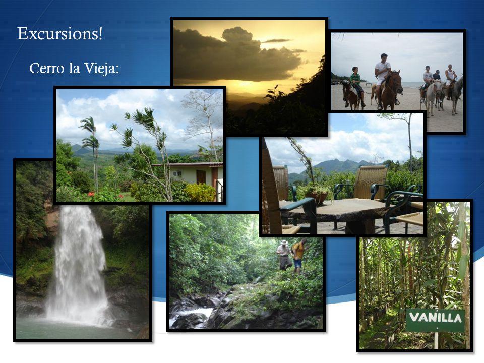  Cerro la Vieja: Excursions!