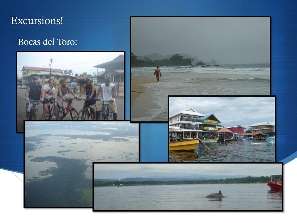  Bocas del Toro: Excursions!