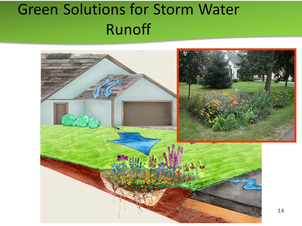 14 Green Solutions for Storm Water Runoff