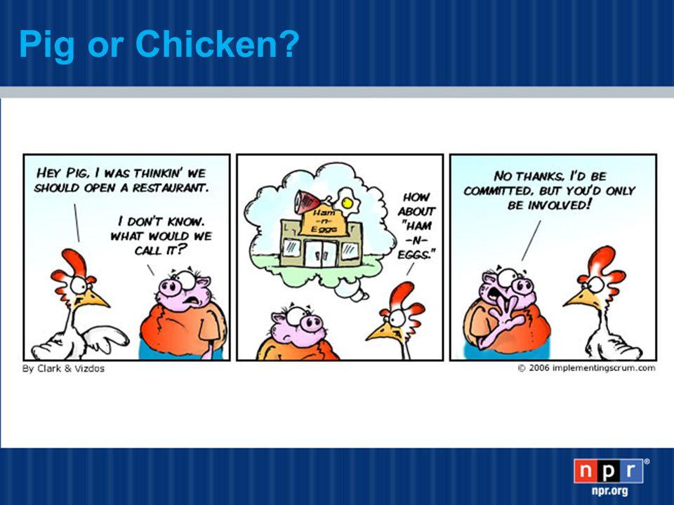 Pig or Chicken