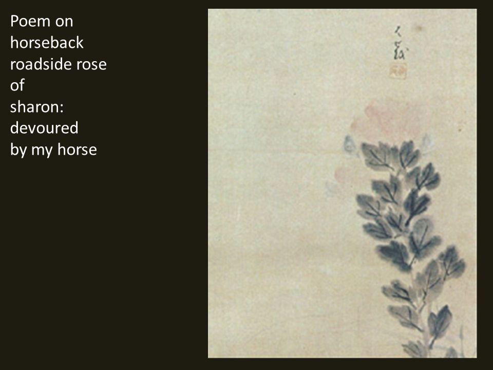 Poem on horseback roadside rose of sharon: devoured by my horse