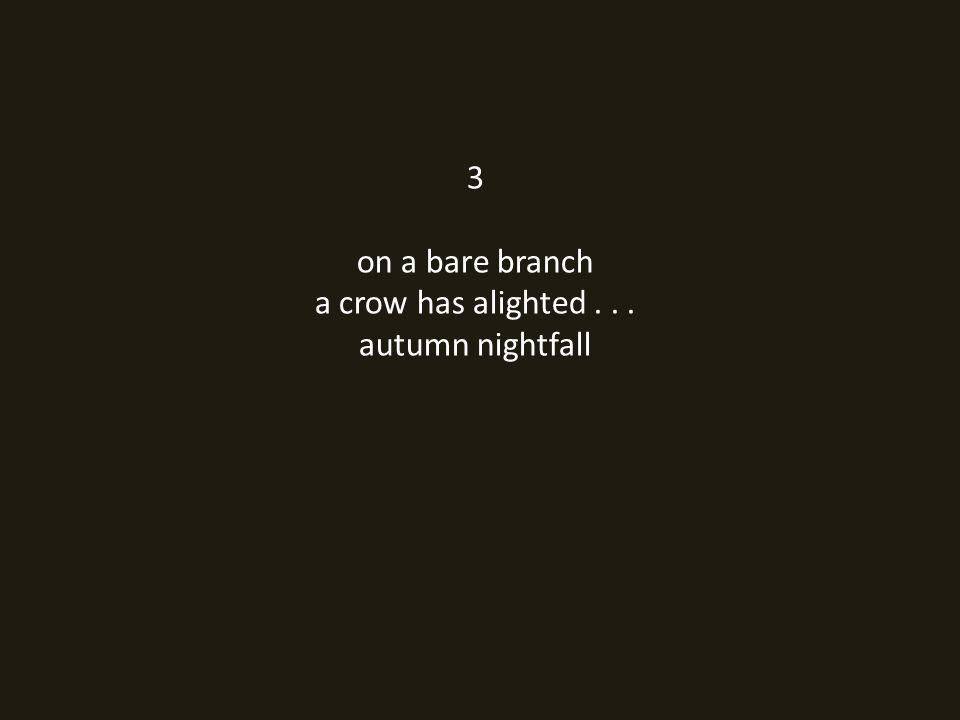 3 on a bare branch a crow has alighted... autumn nightfall