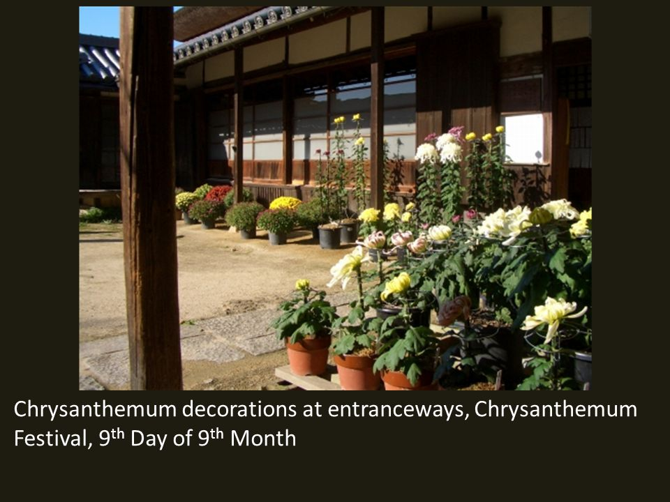 Chrysanthemum decorations at entranceways, Chrysanthemum Festival, 9 th Day of 9 th Month