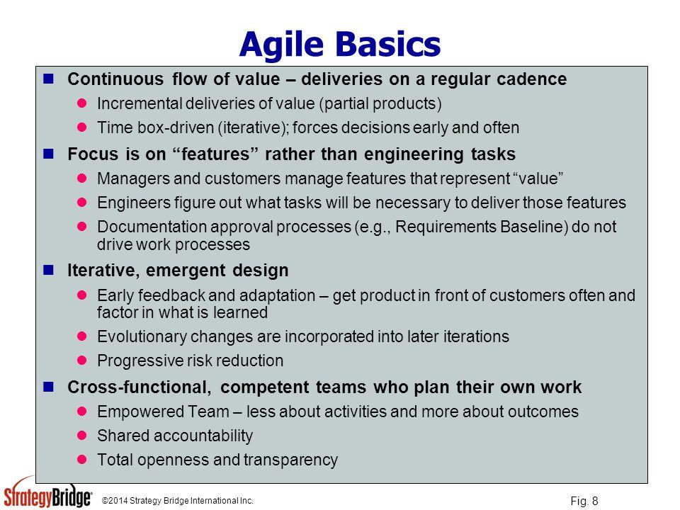 ©2014 Strategy Bridge International Inc.A Concept View of Agile Development Fig.