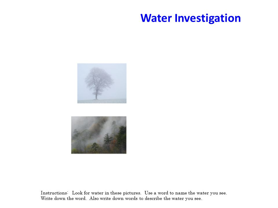 Water Investigation Instructions: Look for water in these pictures.