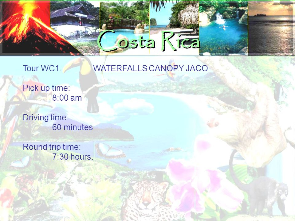 Tour WC1. WATERFALLS CANOPY JACO Pick up time: 8:00 am Driving time: 60 minutes Round trip time: 7:30 hours.