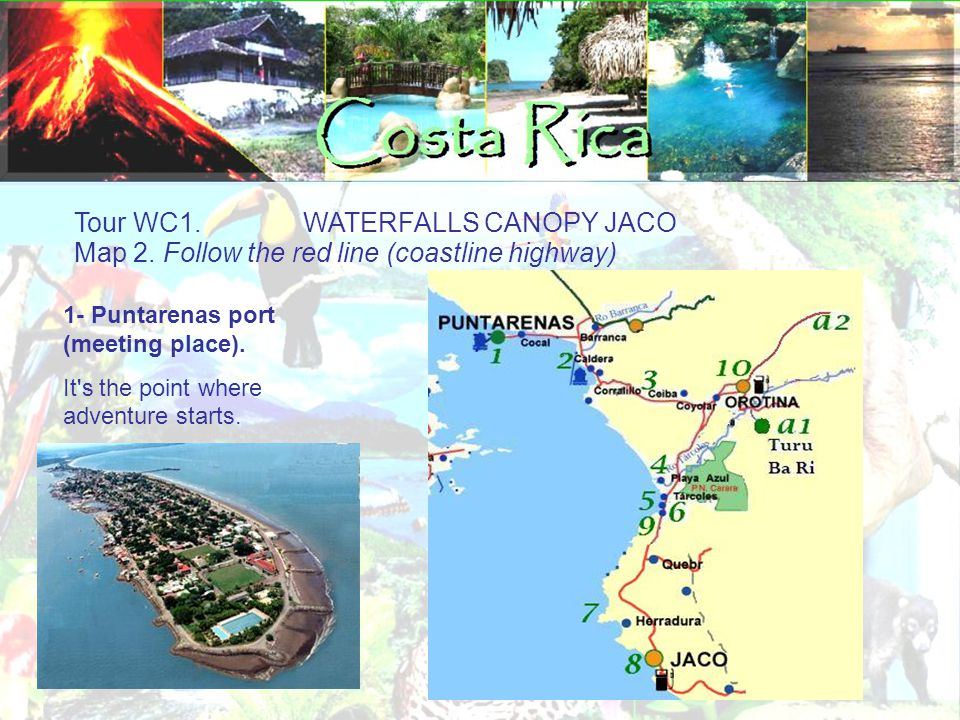 Wildlife of Costa Rica Odyssey tours. Your host and friends in Costa Rica!